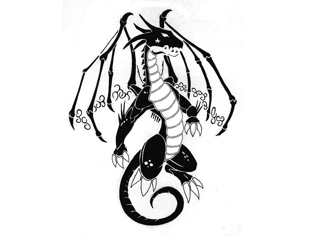 Dragon Black And White Wallpapers Top Free Dragon Black And