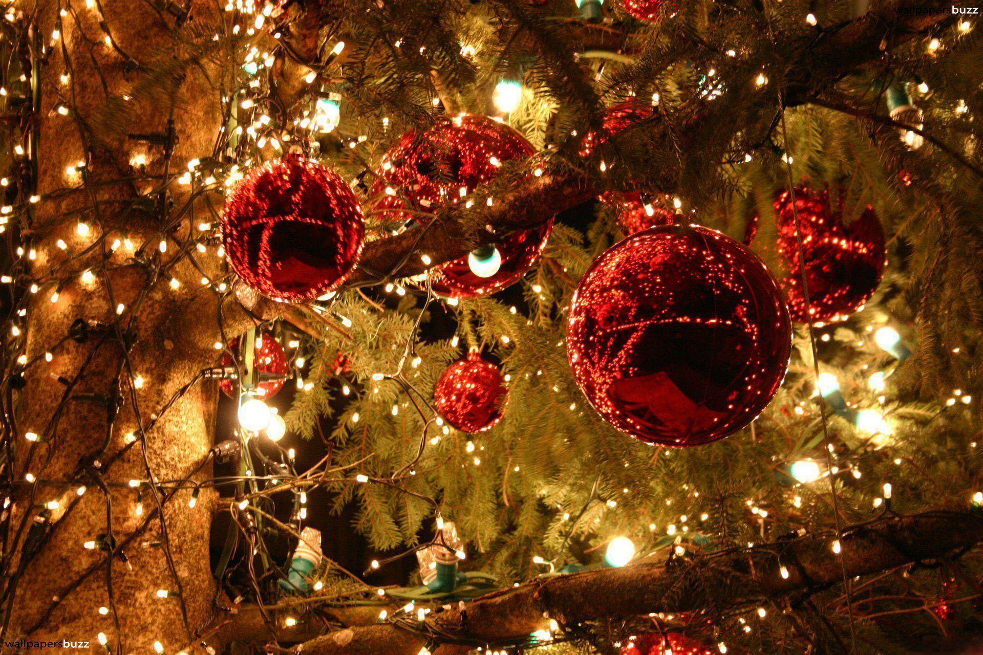 Light High Resolution Christmas Wallpapers Top Free Light