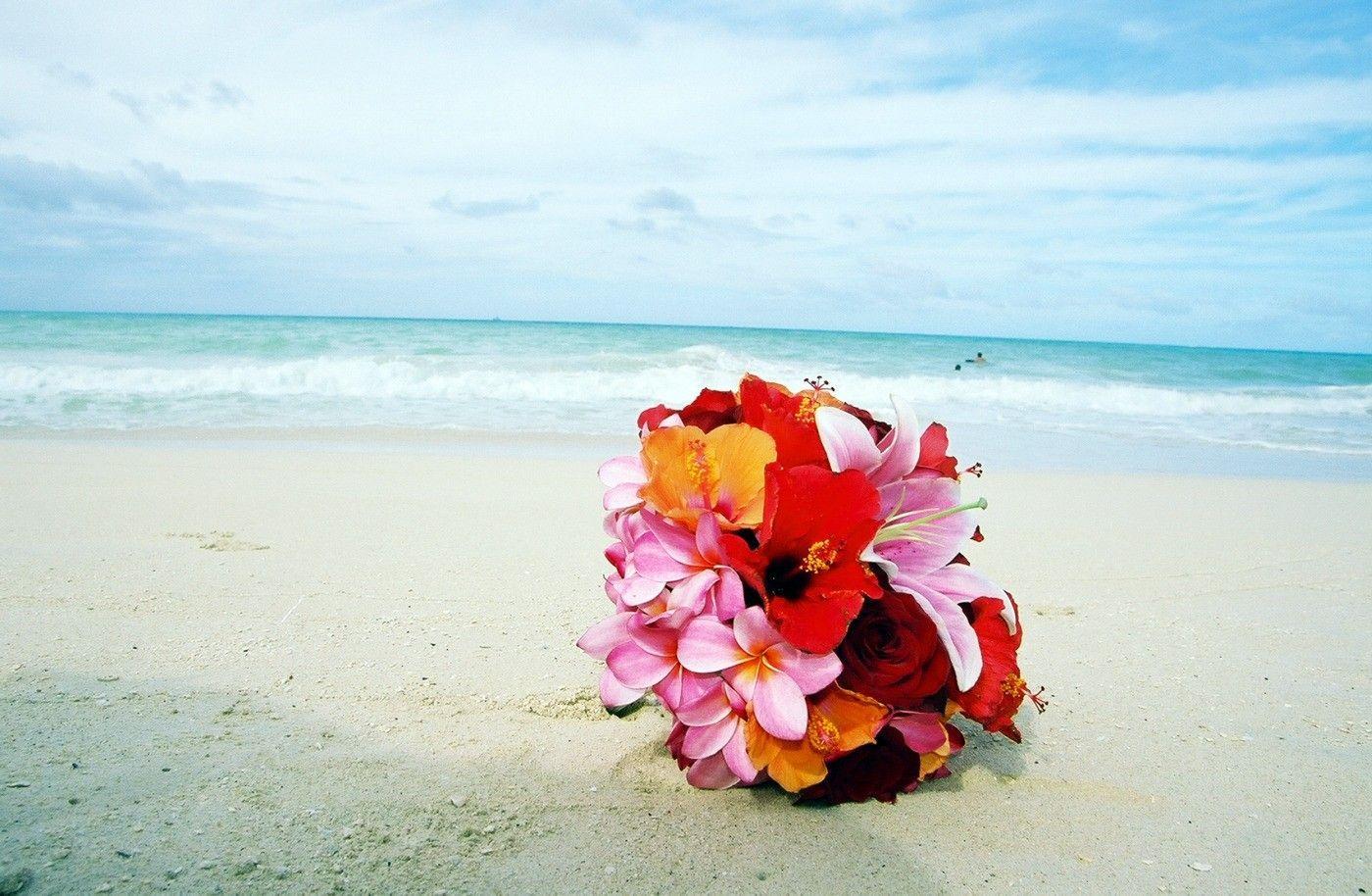 39 Best Free Pink Tropical Beach Wallpapers - WallpaperAccess