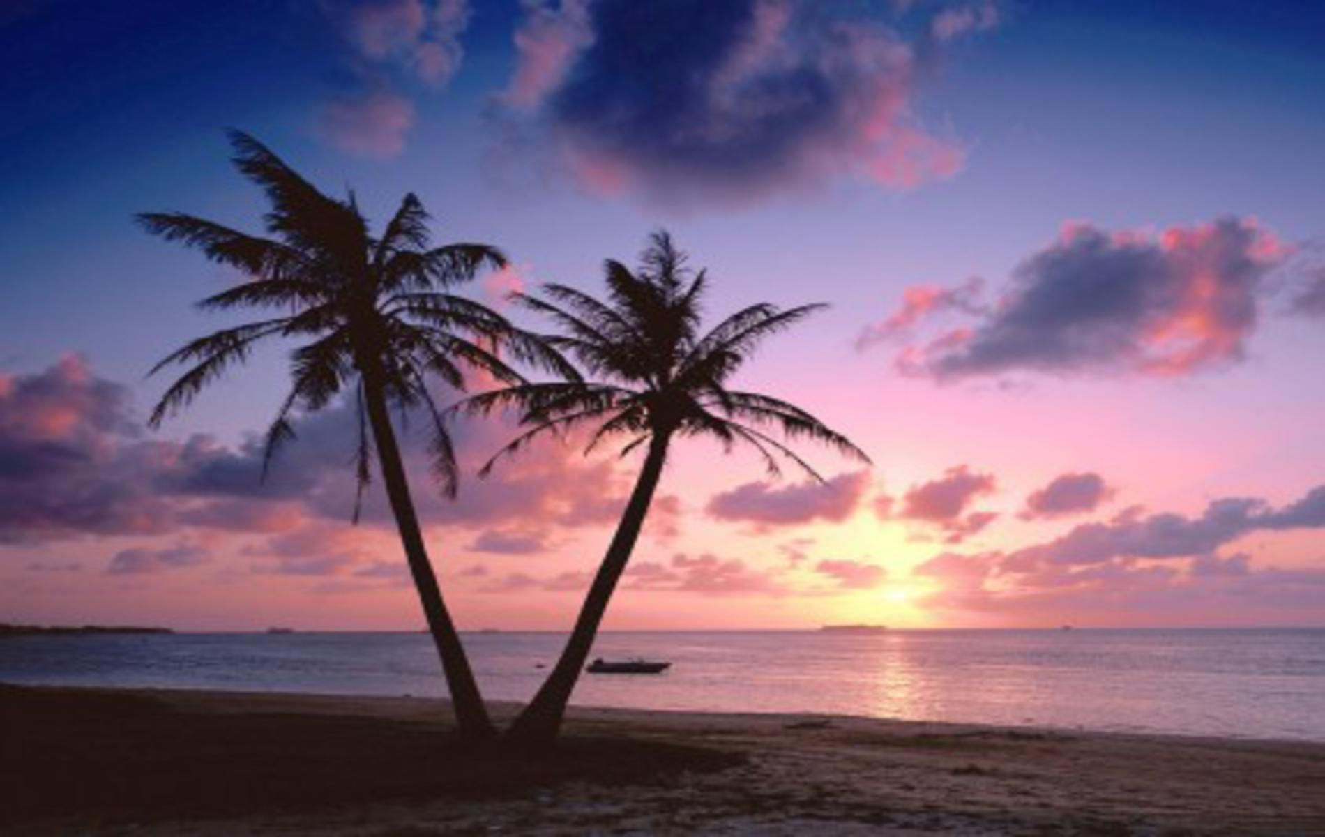 Pink Tropical Beach Wallpapers - Top Free Pink Tropical ...