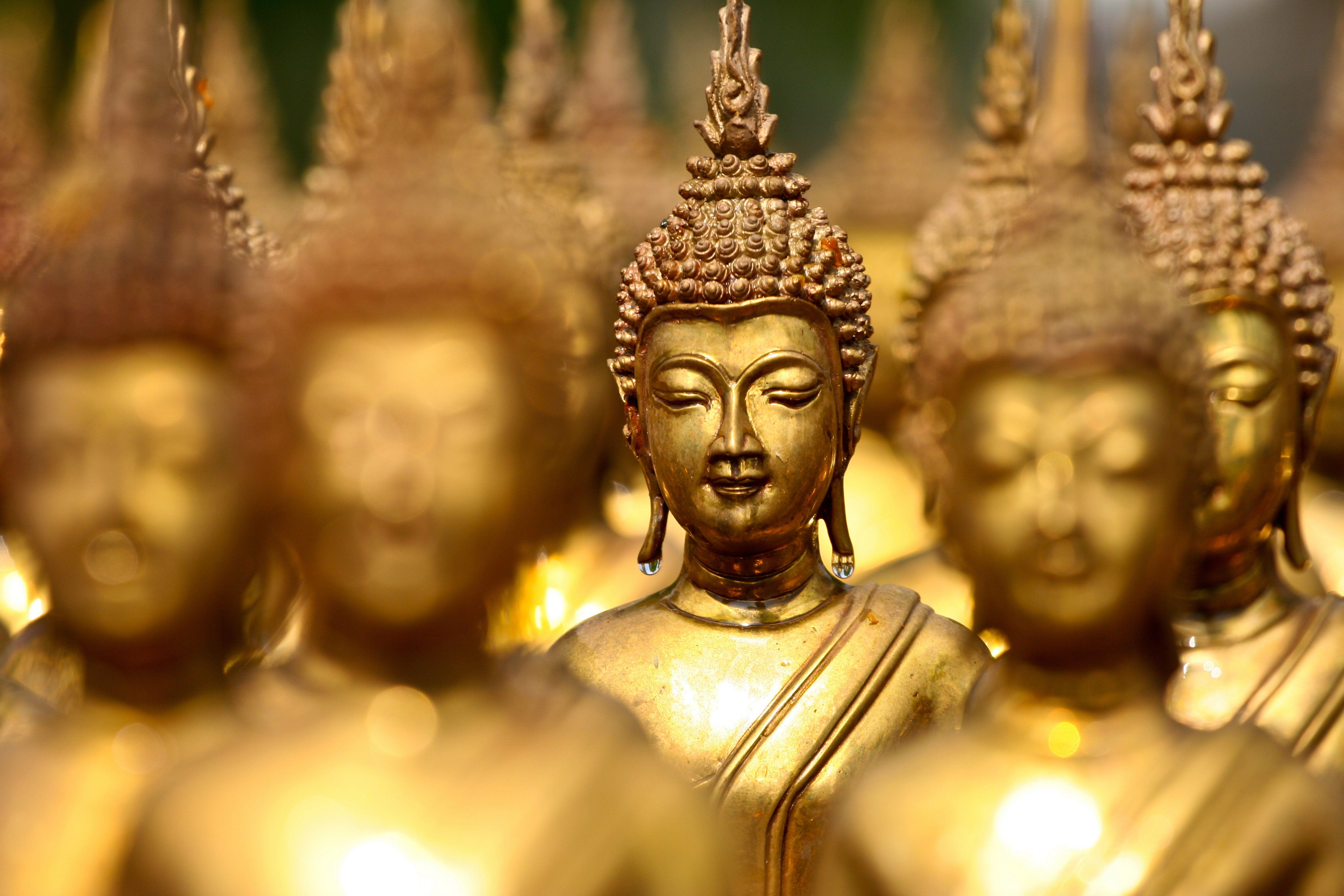 Buddha Wallpaper 8k: Top Free Buddha HD Backgrounds