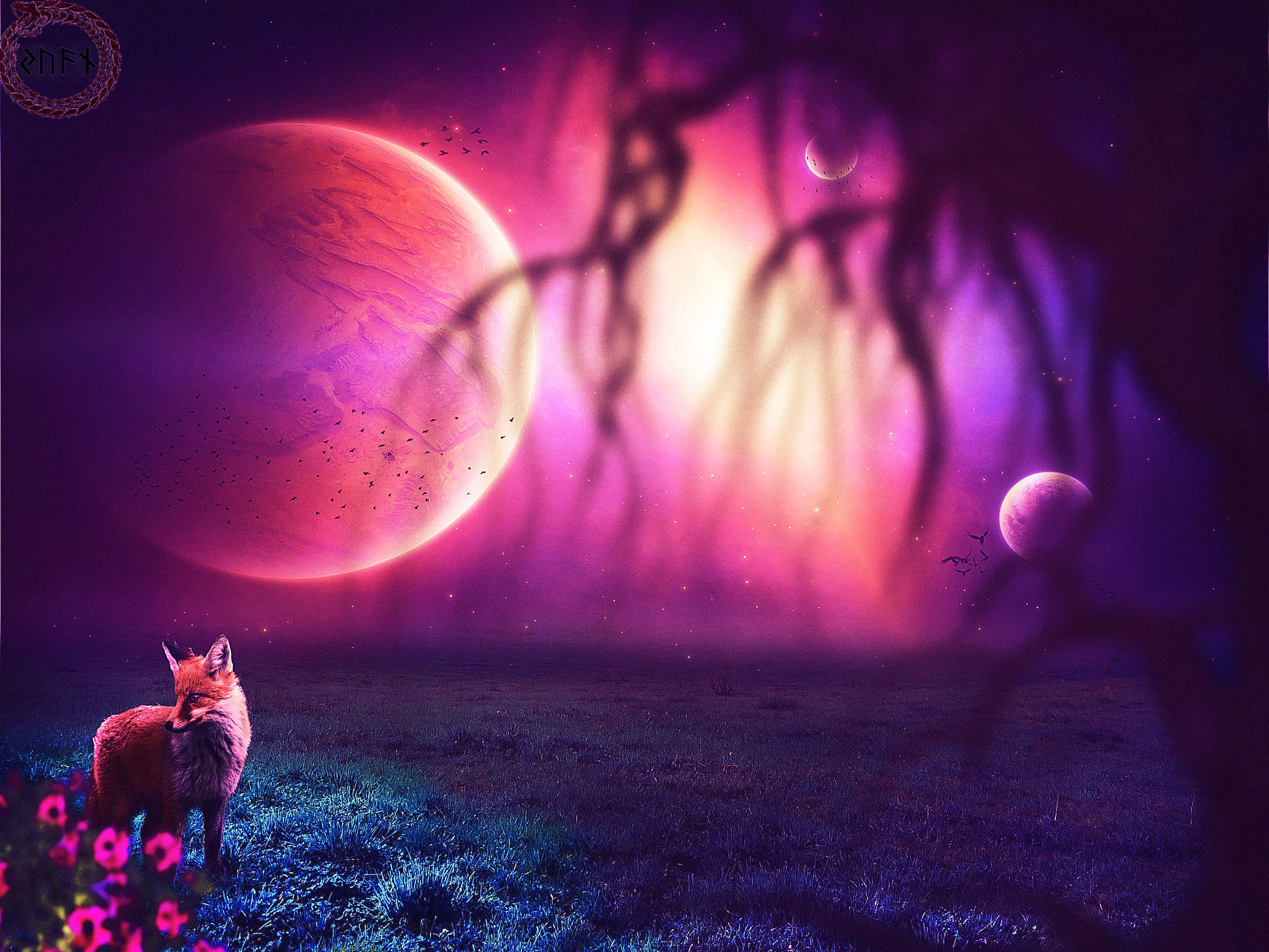 Top Free Galaxy Fox Backgrounds