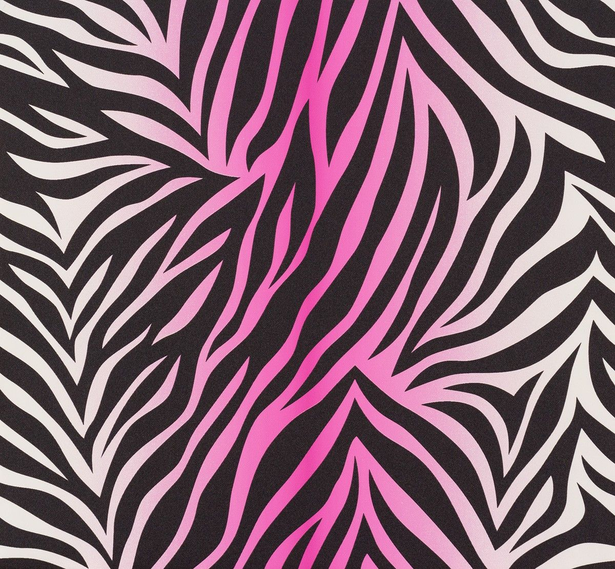 Pink And Black Zebra Wallpapers Top Free Pink And Black Zebra