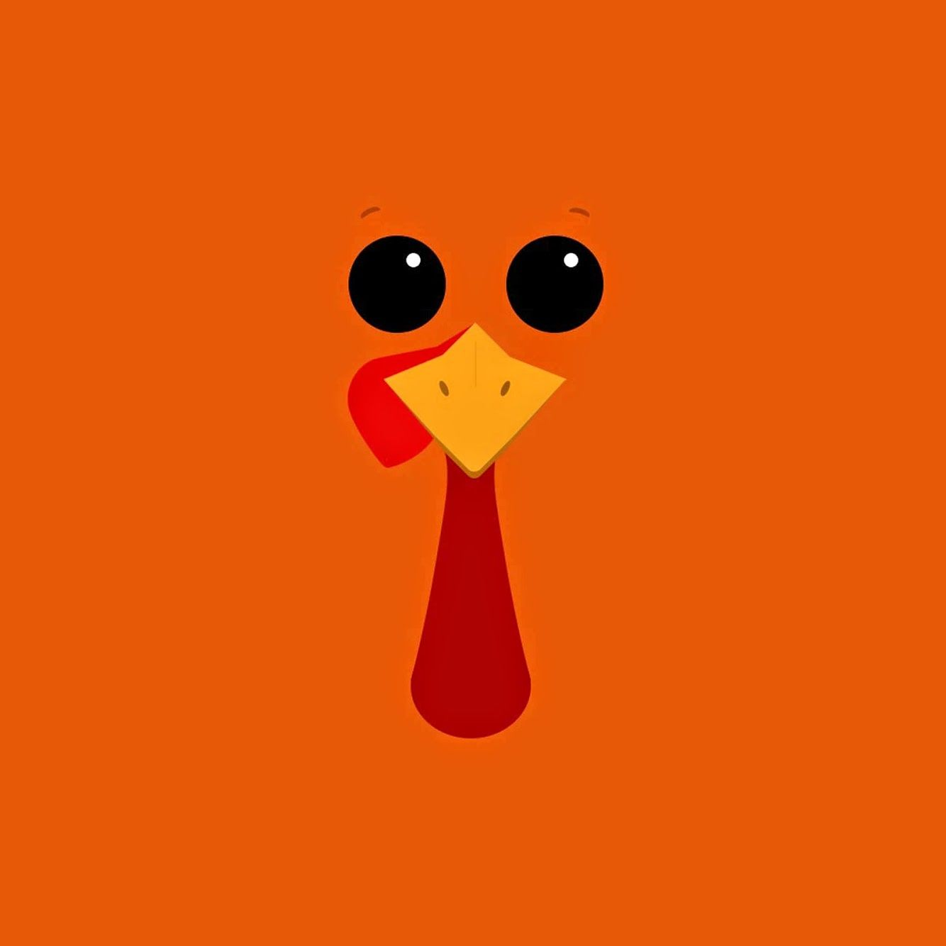 46 Best Free Cartoon Turkey Wallpapers Wallpaperaccess