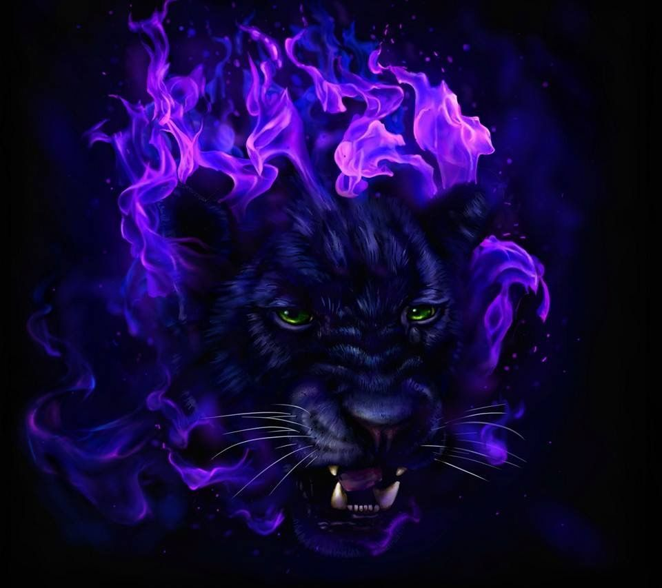 Purple Panther Wallpapers Top Free Purple Panther Backgrounds Wallpaperaccess