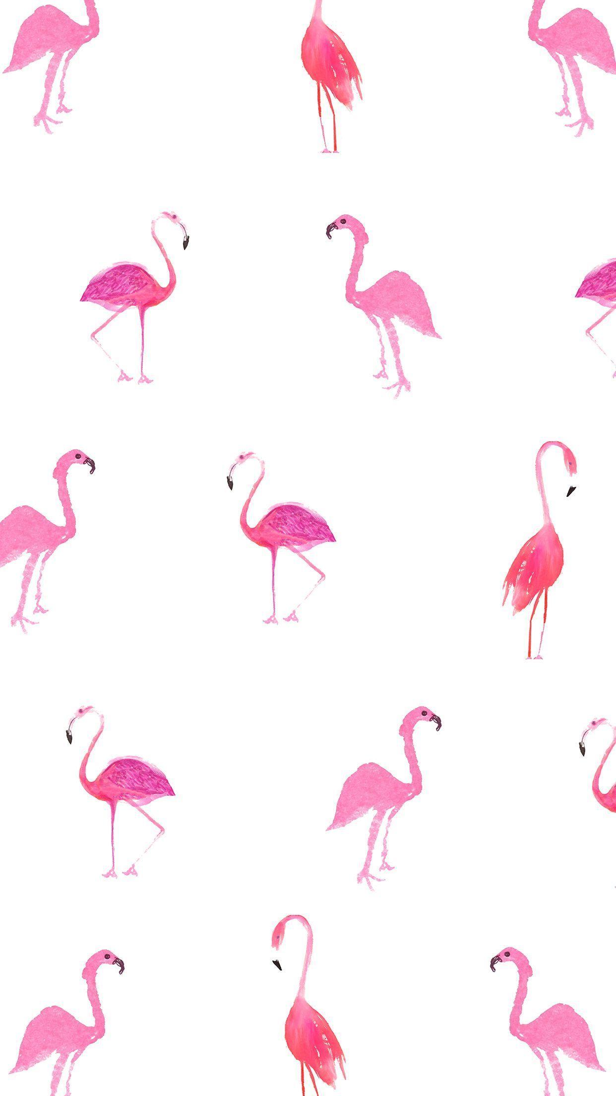 Download 8000 Wallpaper Iphone Flamingo  Terbaik
