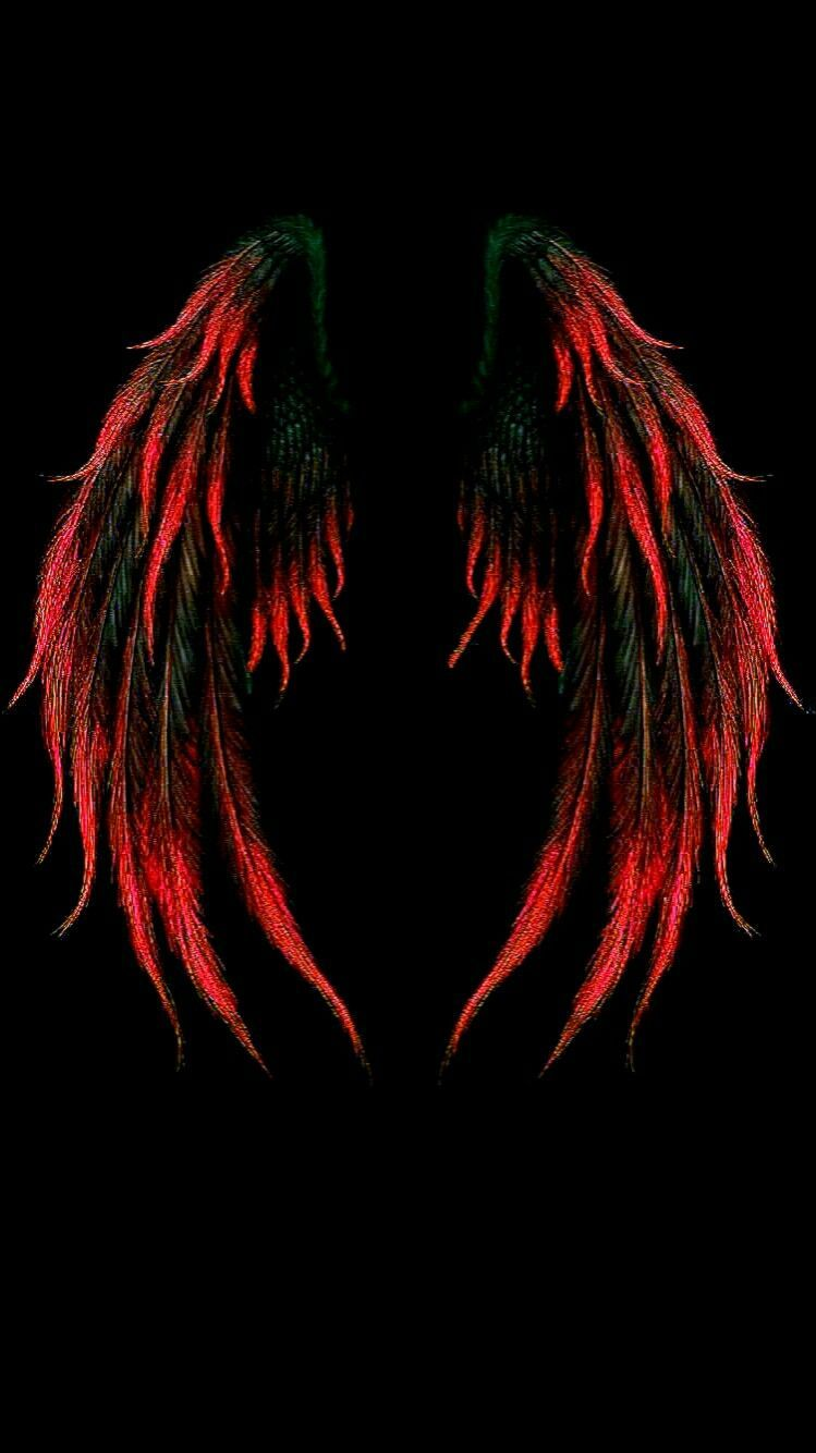 Wings Iphone Wallpapers Top Free Wings Iphone Backgrounds