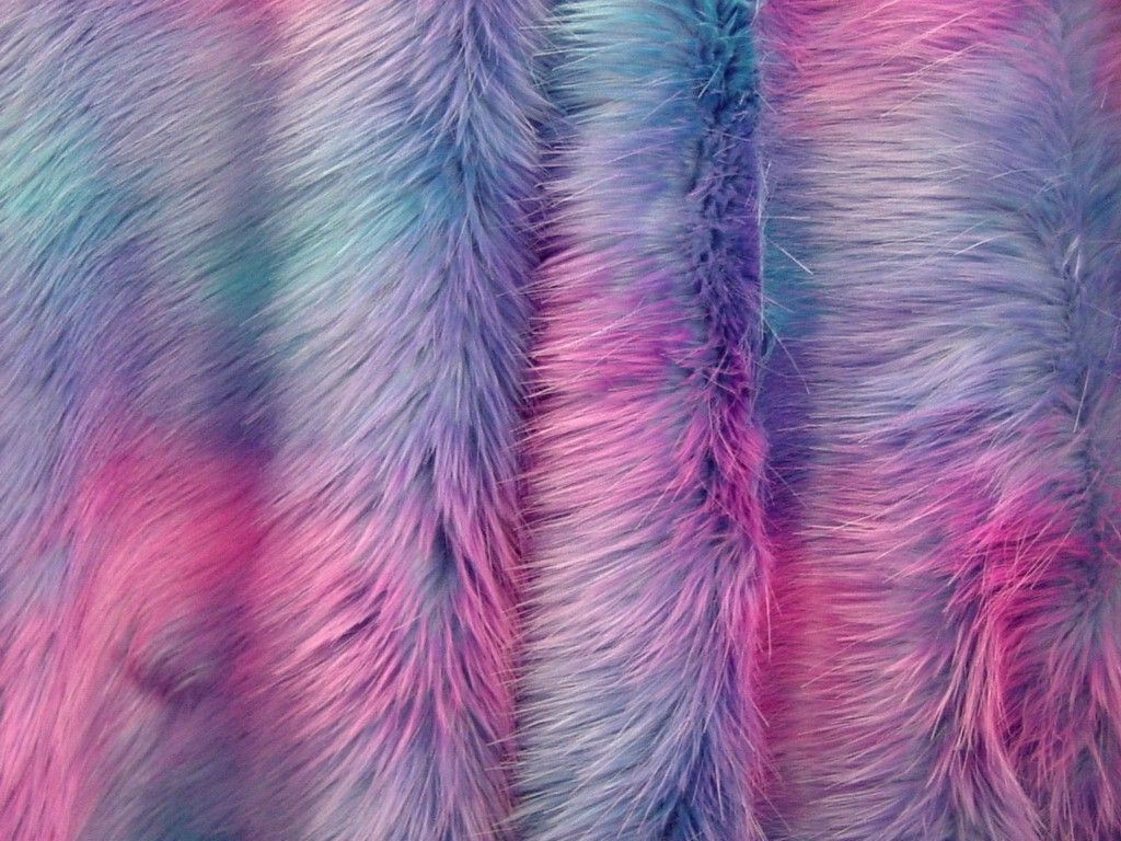 Furry Blue Girly Wallpapers Top Free Furry Blue Girly