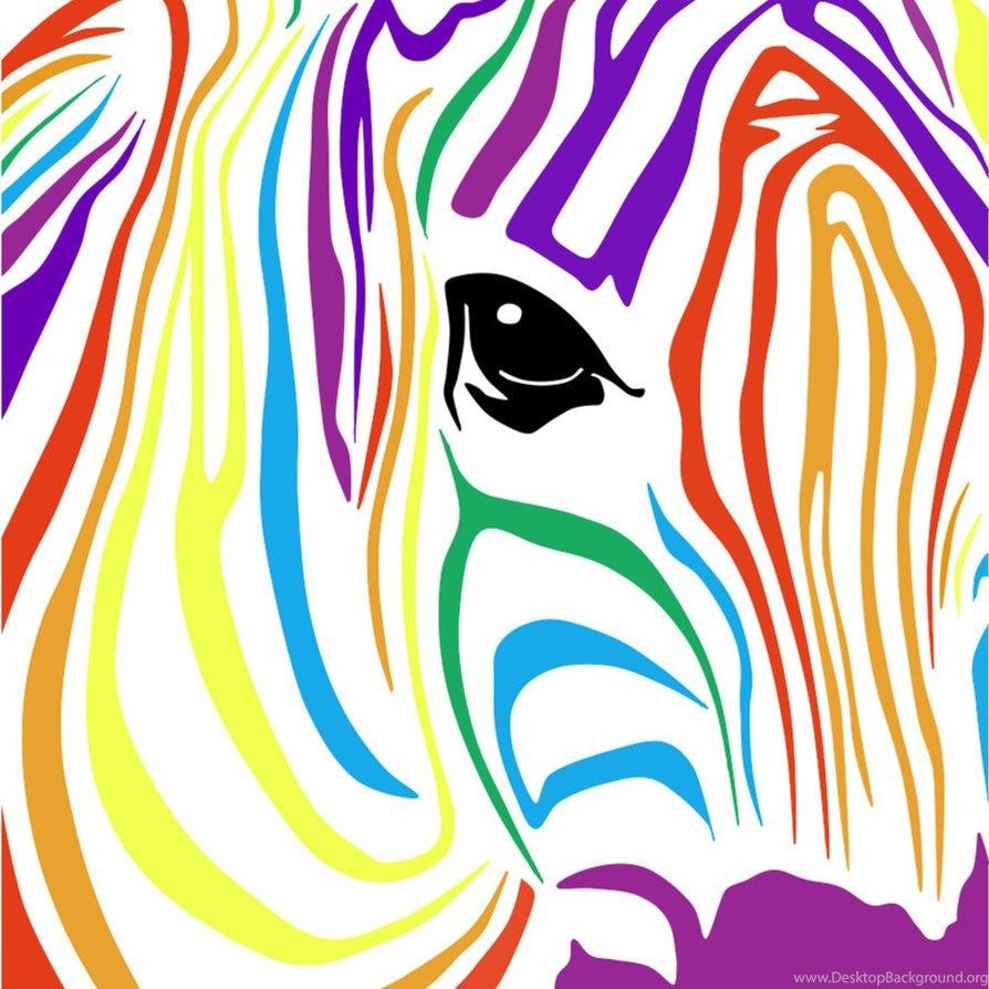 Rainbow Zebra Wallpapers Top Free Rainbow Zebra