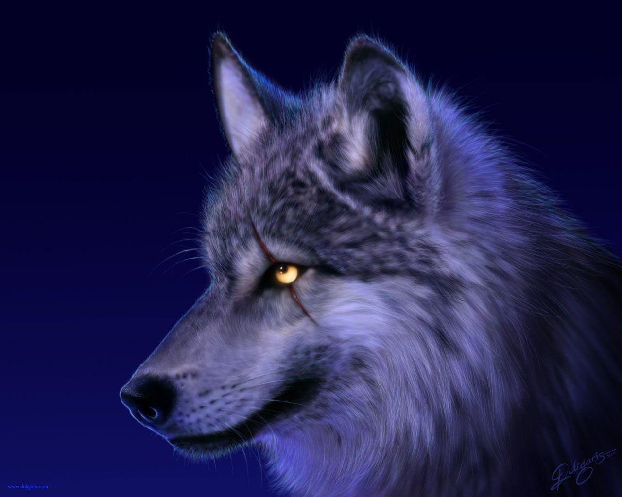 1280x1024 Wolf HD Hình nền và Hình nền