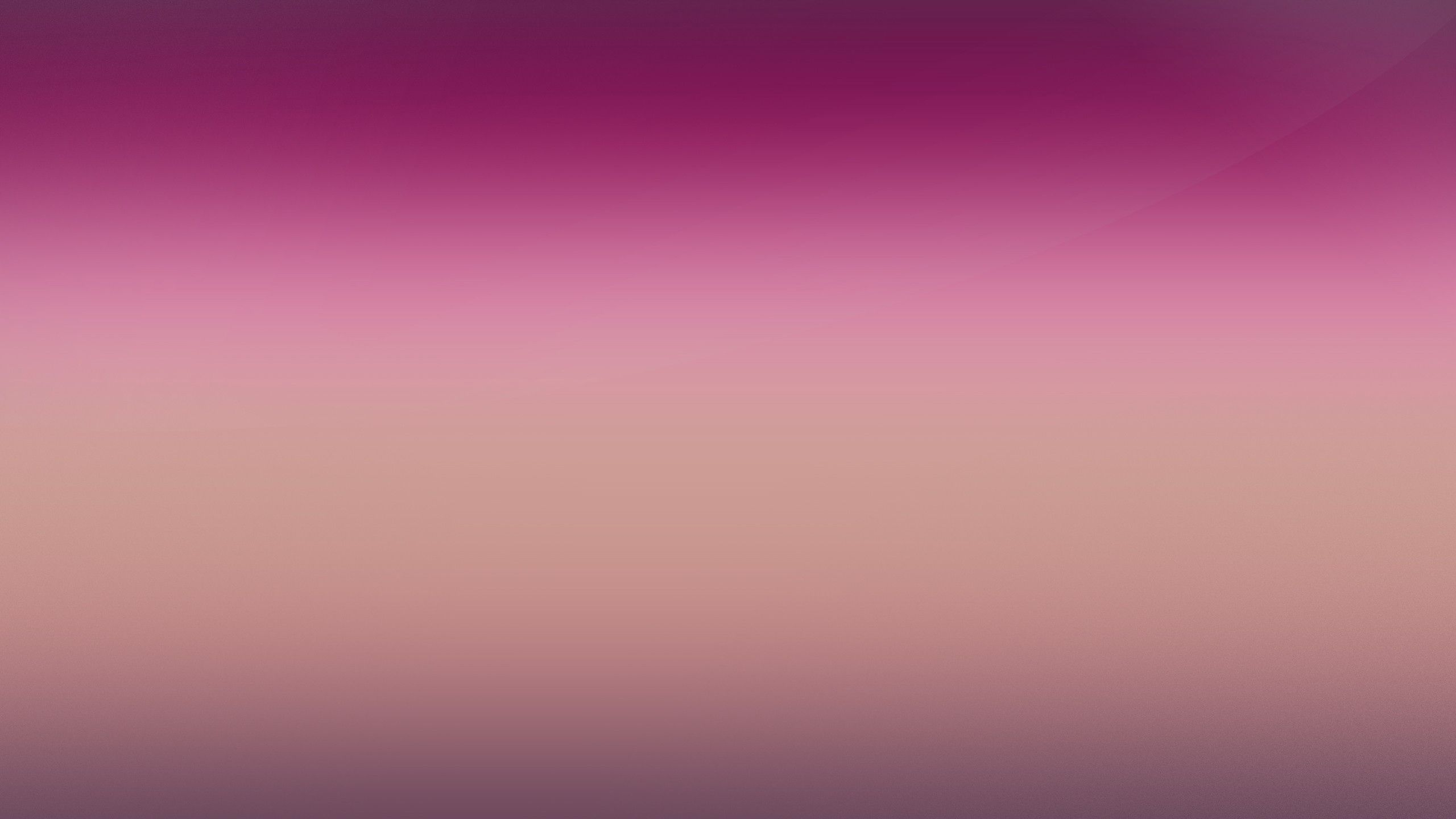 2560X1440 Pink Wallpapers - Top Free 2560X1440 Pink