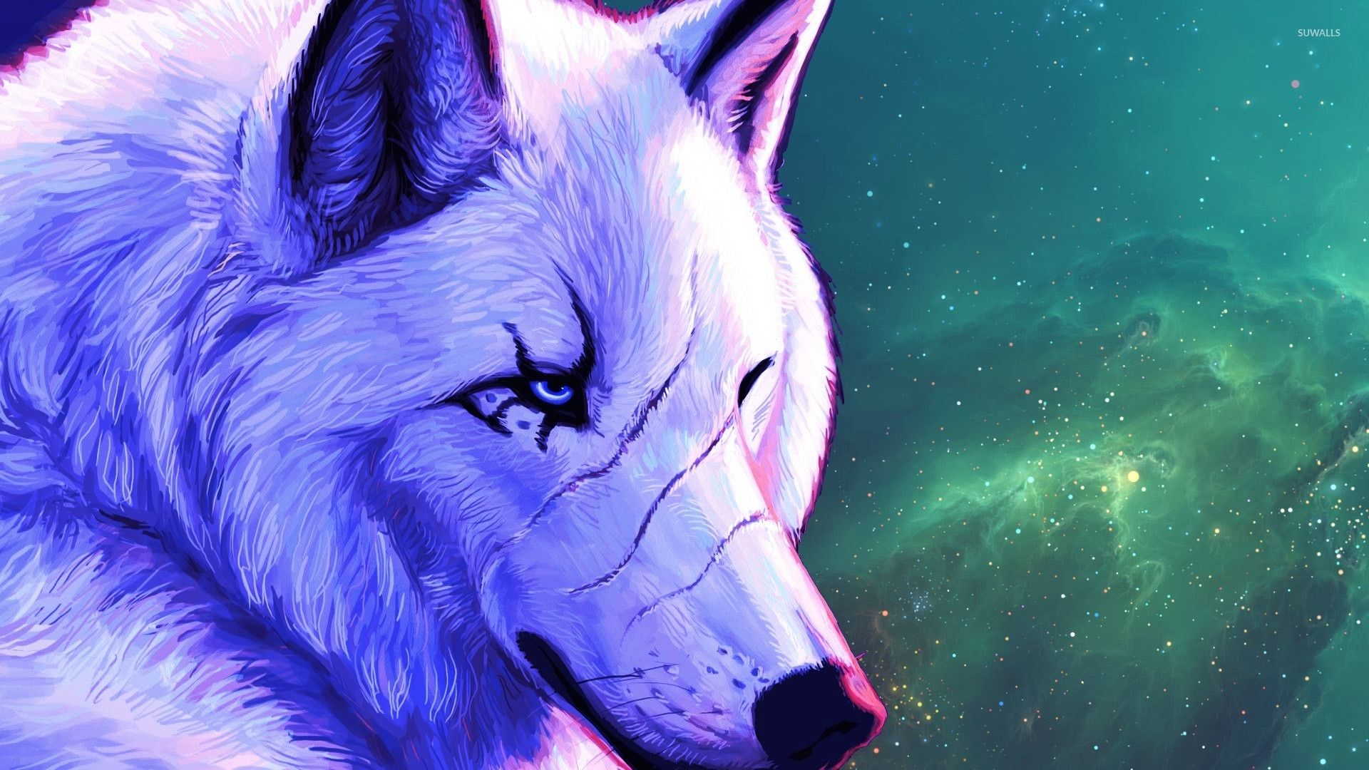 Alpha Wolf Wallpapers Top Free Alpha Wolf Backgrounds