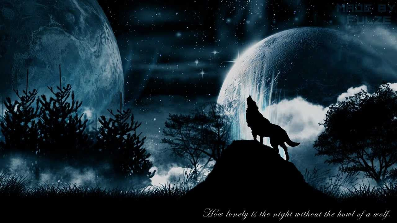 The Lone Wolf Howling At Moon Wallpapers Top Free The Lone Wolf