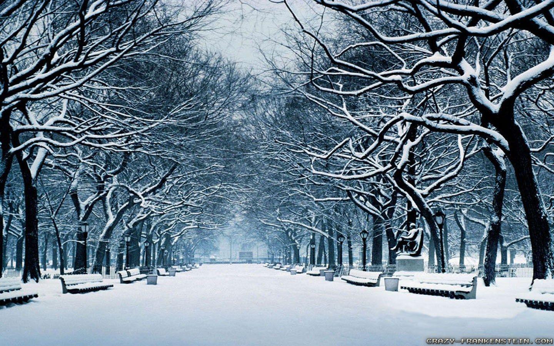 Albany NY Winter Widescreen Desktop ...
