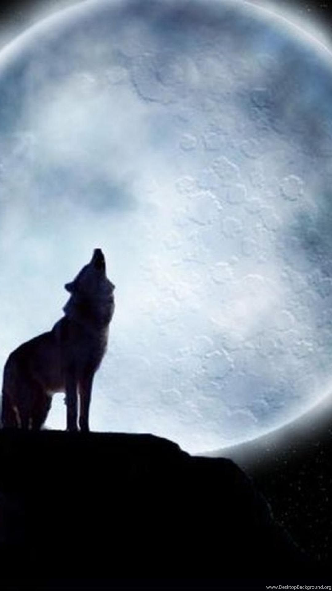 Lone Wolf iPhone Wallpapers - Top Free