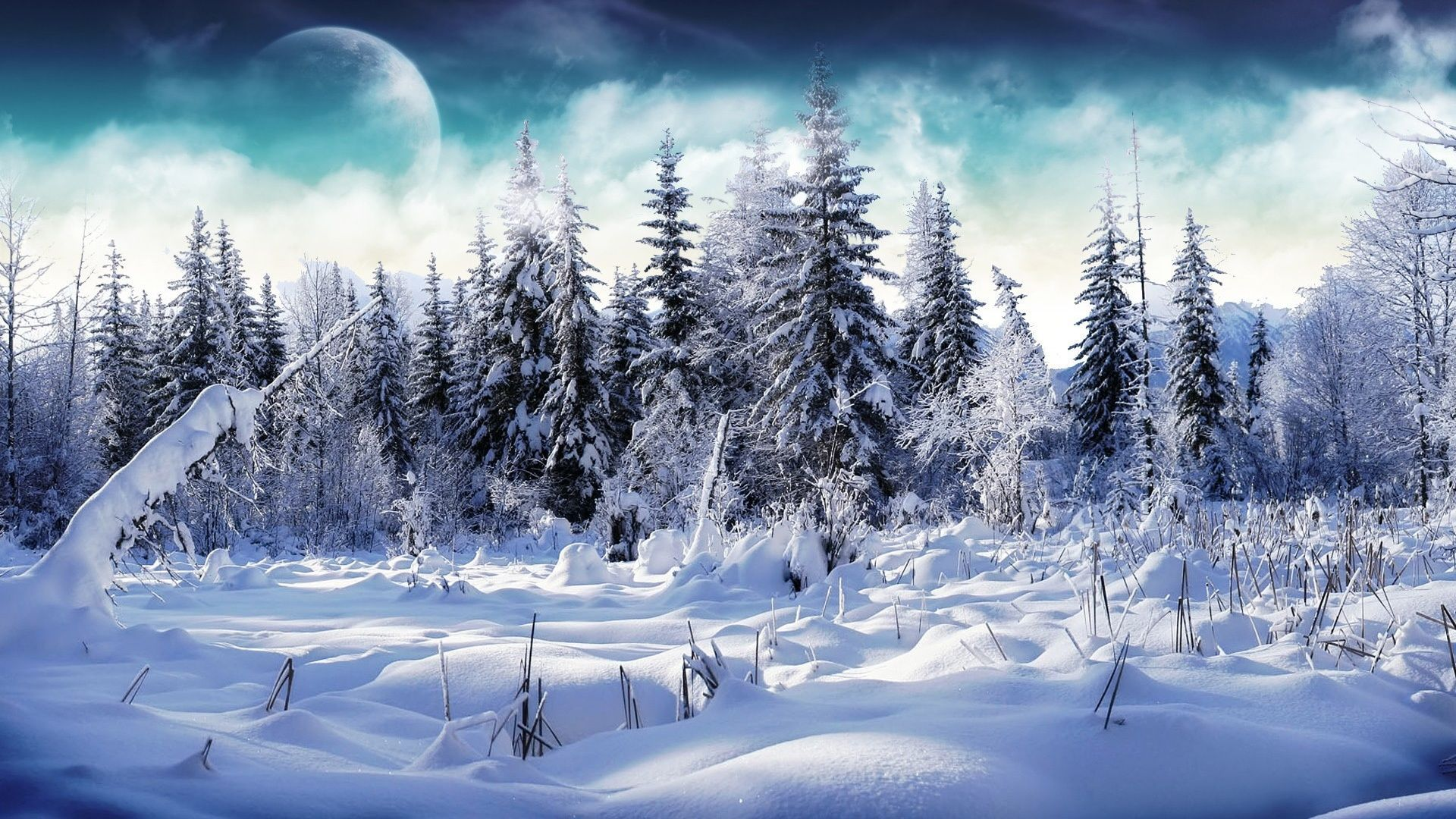 1080p Snow Wallpapers Top Free 1080p Snow Backgrounds
