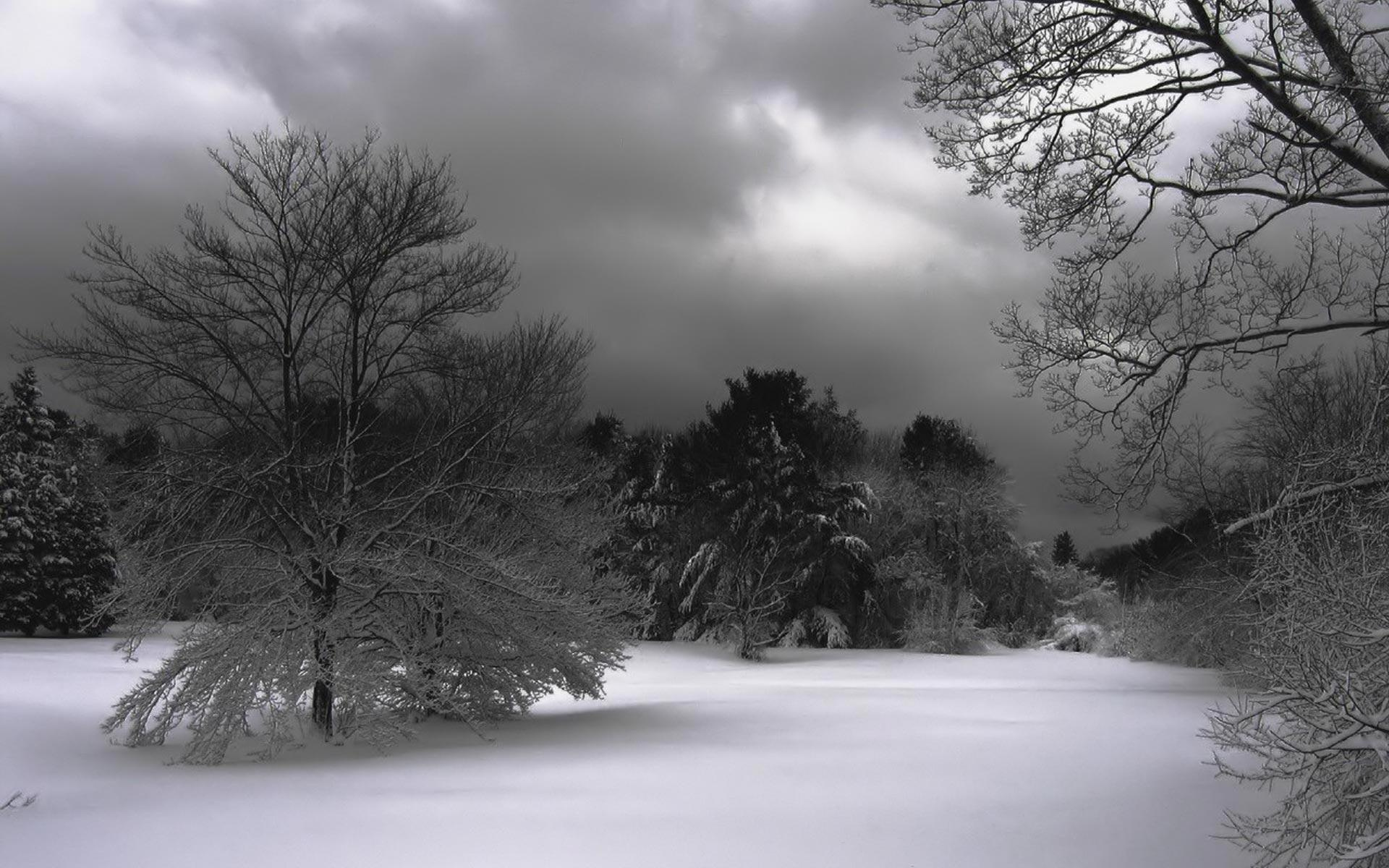 Black Winter Wallpapers Top Free Black Winter Backgrounds
