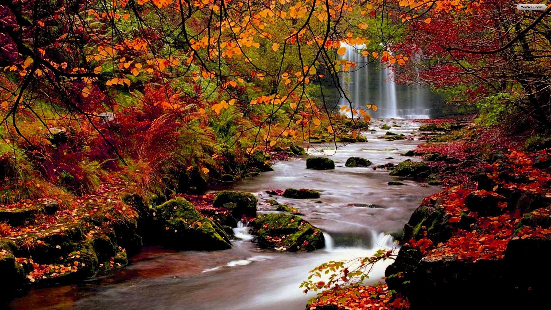 Cool Fall Waterfall Wallpapers Top Free Fall Waterfall Home Interior And Landscaping Ologienasavecom