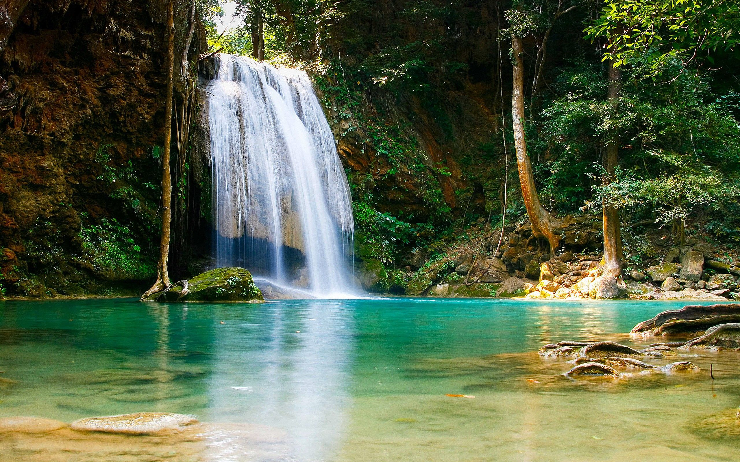 59 Best Free Forest Waterfall Wallpapers Wallpaperaccess