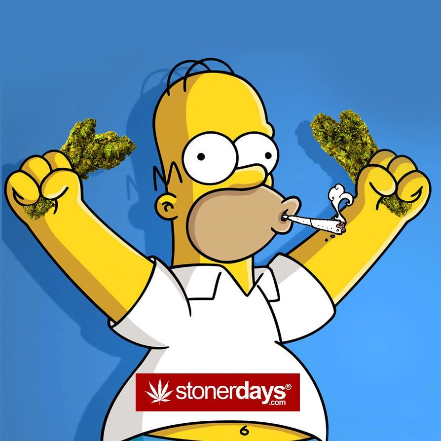 Simpsons Weed Wallpapers Top Free Simpsons Weed Backgrounds Wallpaperaccess