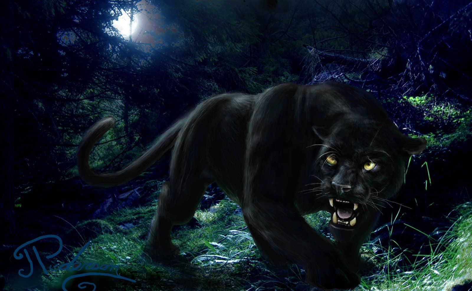 Jumping Black Panther Animal Wallpapers Top Free Jumping Black Panther Animal Backgrounds Wallpaperaccess