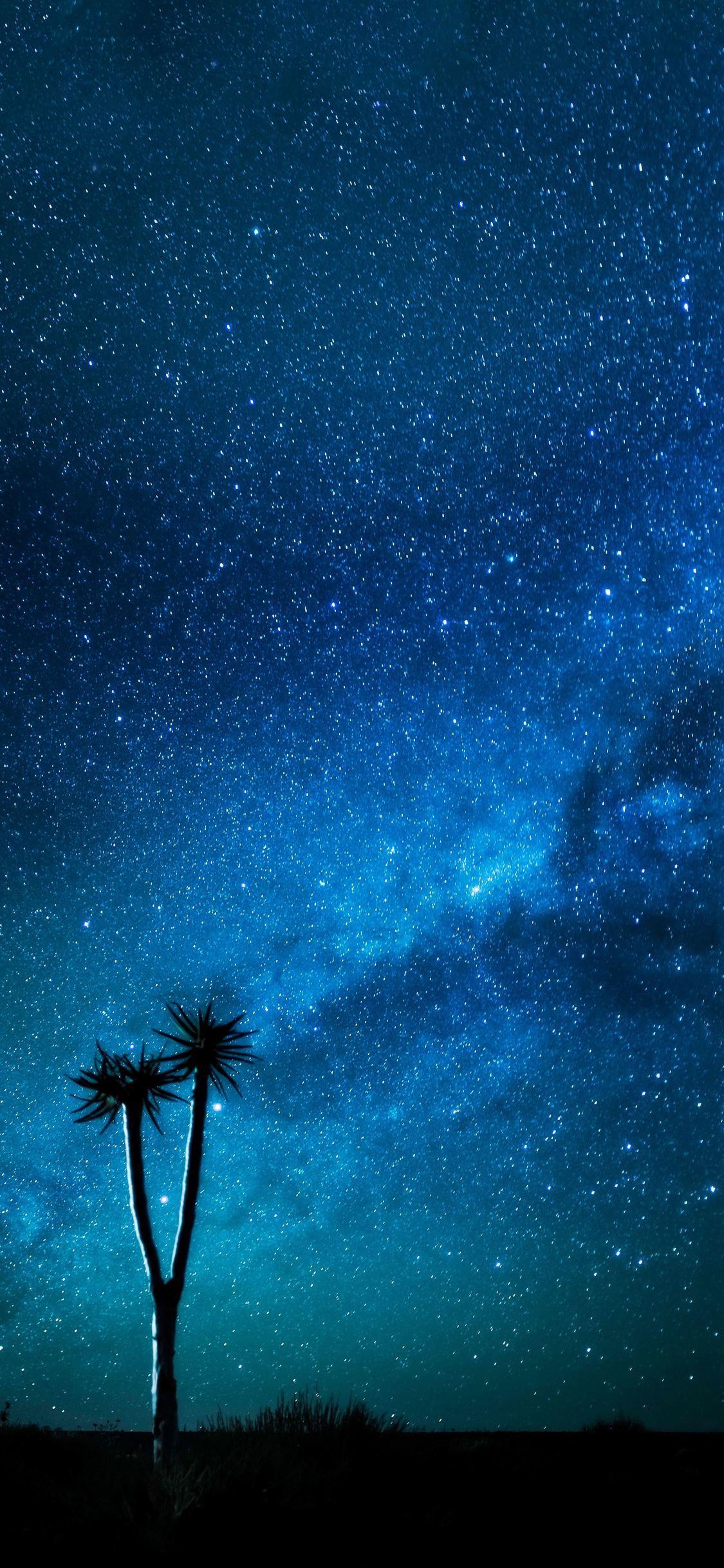 Milky Way 4k Phone Wallpapers Top Free Milky Way 4k Phone
