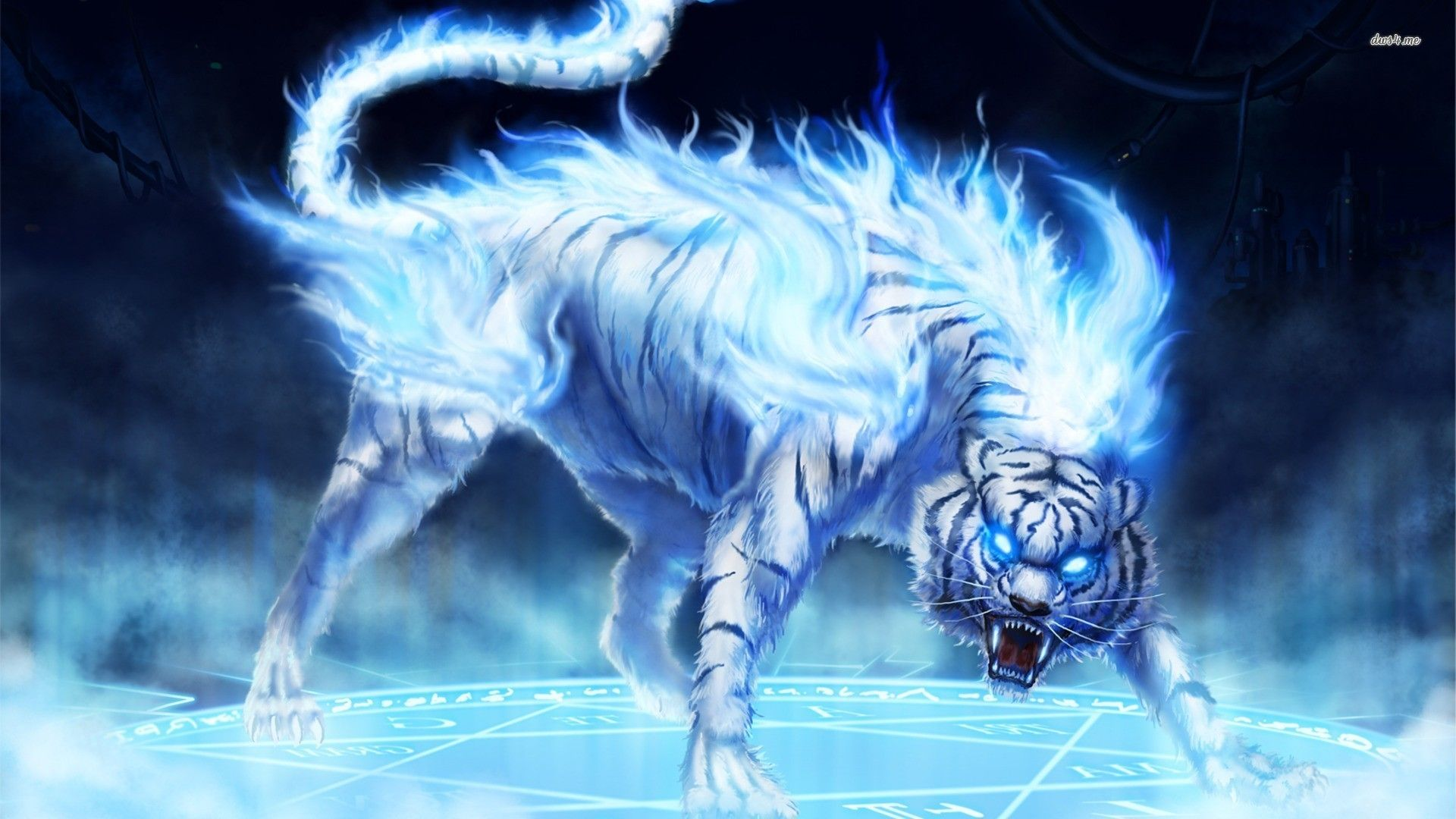 Ice Wolf Wallpapers - Top Free Ice Wolf