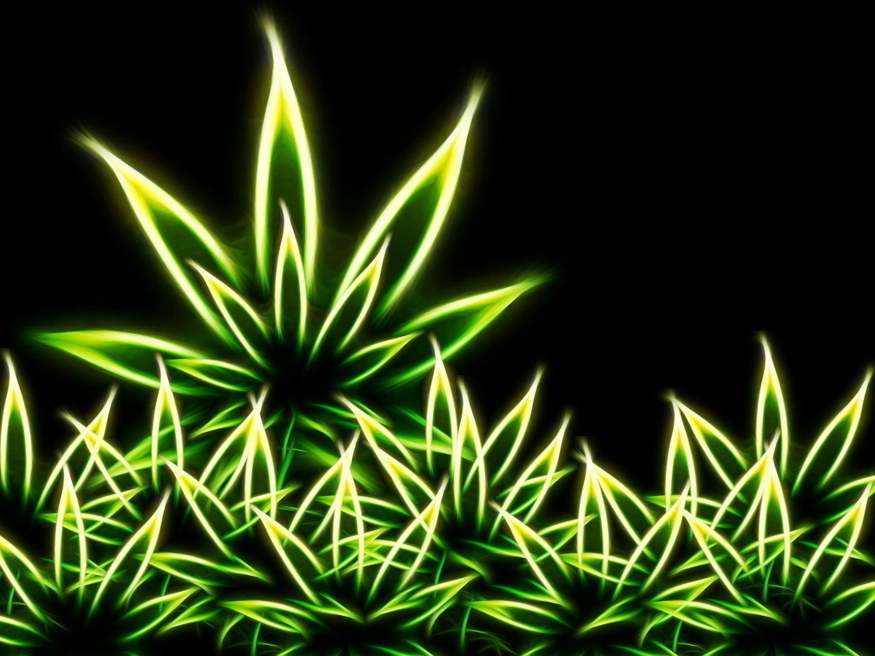 """1920x1080 Funny Weed Wallpapers - Shared by 