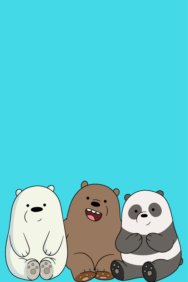 We Bare Bears Wallpapers Top Free We Bare Bears Backgrounds Wallpaperaccess