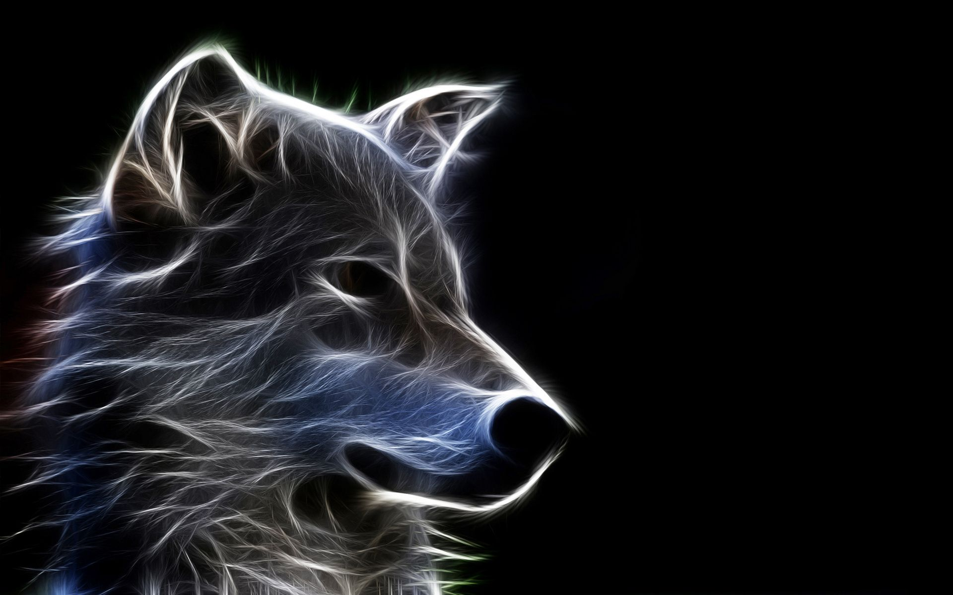 Neon Wolf Wallpapers - Top Free Neon ...