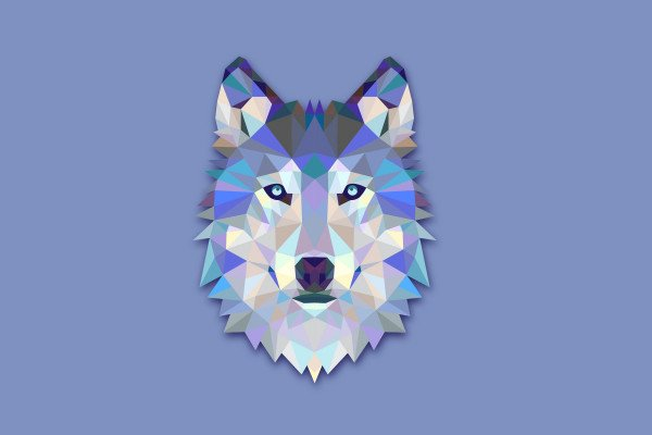 Wolf Geometric Wallpaper
