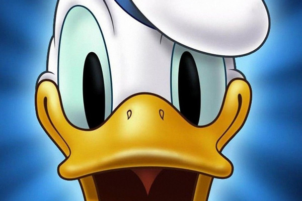 Daffy Duck Wallpapers - Top Free Daffy Duck Backgrounds ...