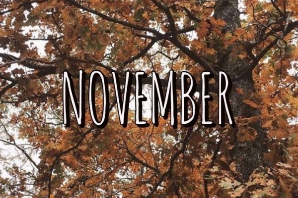 November Aesthetic Wallpaper