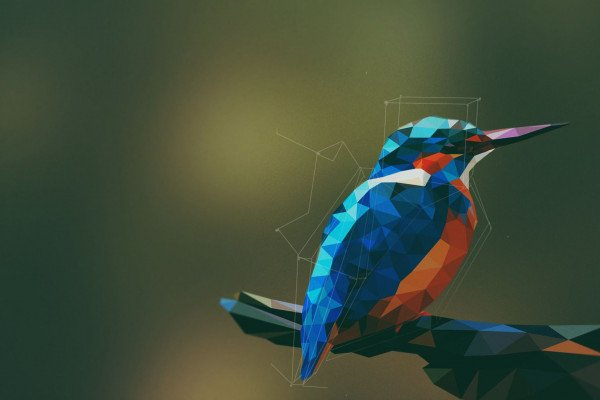 Geometric Bird Wallpaper