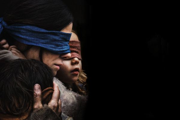 Bird Box Wallpaper