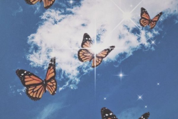 Aesthetic Butterflies Wallpapers Top Free Aesthetic Butterflies Backgrounds Wallpaperaccess Most of us still own a computer and use it to these wallpapers i've created are all aesthetic images of movies, shows, etc, that i've found on pinterest. aesthetic butterflies wallpapers top