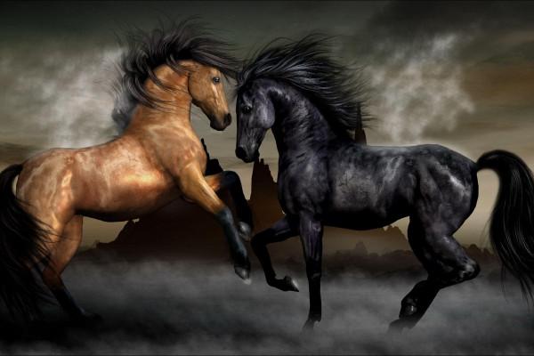 Pegasus Wallpapers Top Free Pegasus Backgrounds Wallpaperaccess Images, Photos, Reviews
