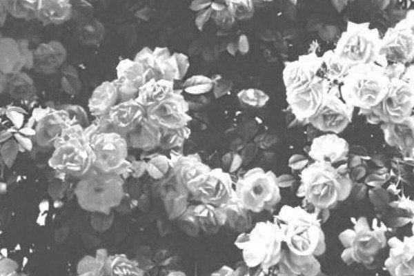 Black And White Aesthetic Girl Wallpapers Top Free Black And White Aesthetic Girl Backgrounds Wallpaperaccess